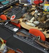 Maltese charged in Sicily over illegal hunting
