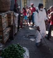 Madagascar plague death toll reaches 74