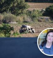 [WATCH] Journalist Daphne Caruana Galizia murdered in Bidnija car bomb