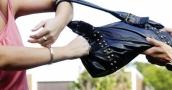 Young job seeker admits to handbag theft
