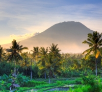 Emirates to commence daily service to Bali