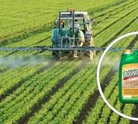 US agrochemical giant Monsanto faces blowback over cancer cover-up
