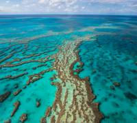 The Great Barrier Reef - an underwater treasure