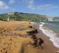 New beach cleaning operations procedures issued by the ERA