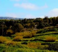 [WATCH] Saviour Balzan's videoblog