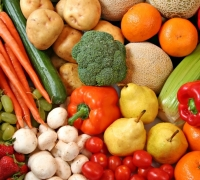 Anti-food wastage action garners attention in EU