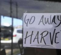 Markets roundup with Harvey and Apple | Calamatta Cuschieri