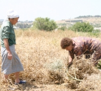 Malta experienced driest winter in 93 years
