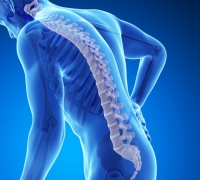 Researchers discover new strong genetic cause for osteoporosis and fractures