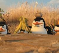 Trailer Park | The Penguins of Madagascar