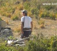 Poacher filmed shooting at protected hoopoe