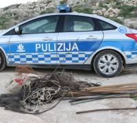 CABS operation unveils 10 cases of illegal bird trapping
