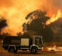 Sicily firefighters 'caused fires for cash'