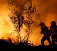 Portugal and Spain wildfires: dozens dead and injured