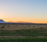 Tasmania – The land where fairytales are created