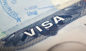 Fake entry visa lands man in jail