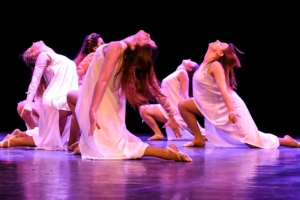 Serving the wider performing arts community | Maltese Islands Festival