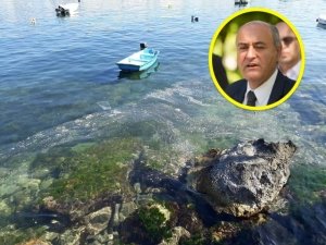 Environment Minister confirms sea slime is from fish farms, inspections underway
