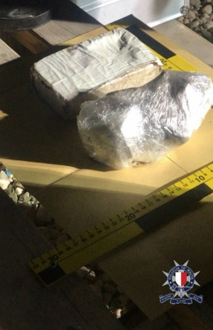 'Ferocious' dog guarding chicken coop drug stash was friendly, police tell court