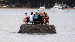 New Zealanders build island to avoid alcohol ban on New Year's Eve