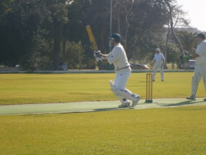 Cricket: Magpies defeat Melita
