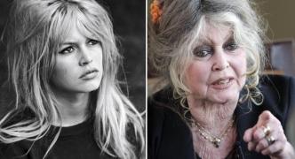 Anti-gay, anti-Islam, anti-migrant Brigitte Bardot tells Malta: stop eating horse