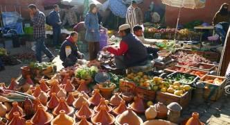 Morocco food stampede leaves 15 dead