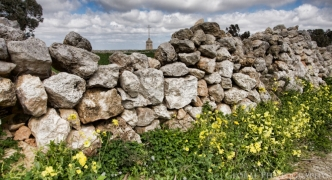 Rubble wall serving no agricultural purpose refused