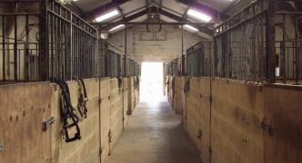 An abuse-prone system allows horse stables to turn into private dwellings