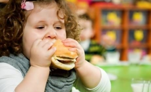 Health ministers call on governments for stronger restriction on unhealthy food