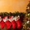 One fourth of those over 55 'less happy' at Christmas