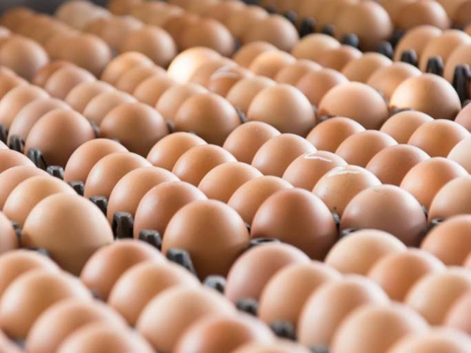 Several countries have been pulling contaminated eggs from the shelves of supermarkets