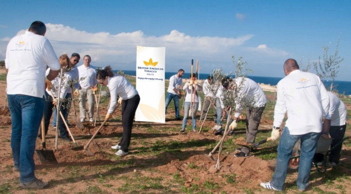 British American Tobacco Malta staff embellishing areas around Fort Rinella, Kalkara.