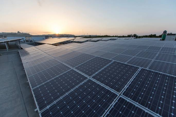 Nectar's investment in the large-scale solar farm has already reduced its traditional energy footprint by at least 50%