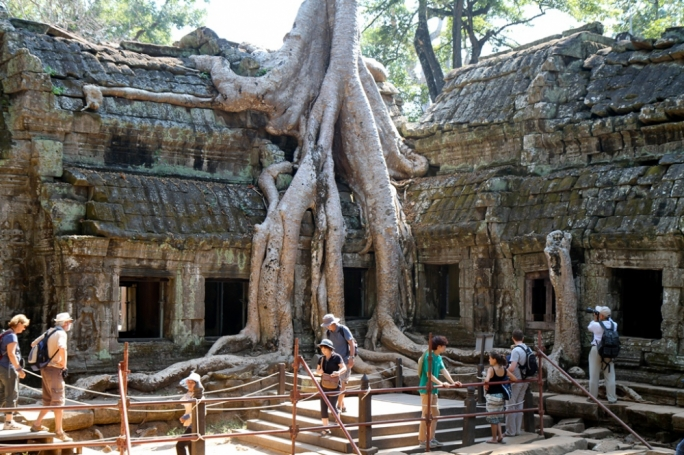Ta Prohm Temple in the Siem Reap Province of Cambodia