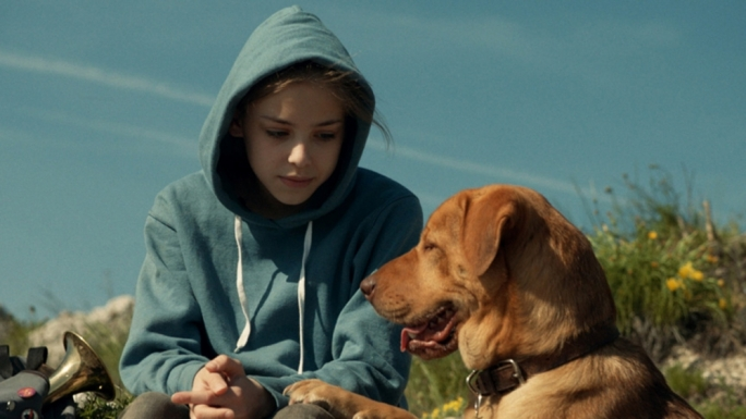 Girl and her dog: Zsófia Psotta risks all to get her dog Hagen back in this award-winning Hungarian drama