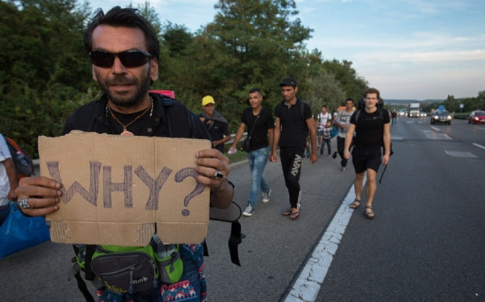 Thousands of Syrian refugees walked from Budapest in Hungary to the German-Austrian border