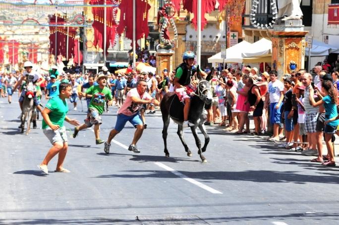 Donkey races in Gozo to mark Santa Marija feast