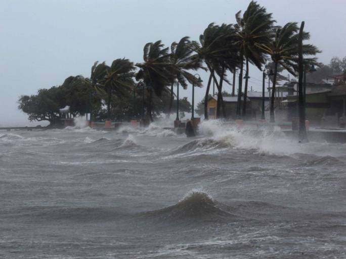 Palm trees buckle under winds and rain as Hurricane Irma slammed across islands in the northern Caribbean. Photo: ABC news