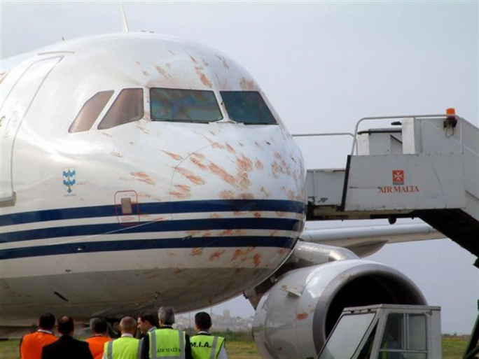 Bird strike forces Air Malta plane to return to airport
