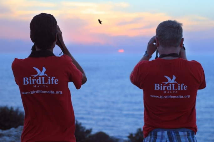 Over the next three week volunteers will be monitoring illegal hunting around Malta and Gozo