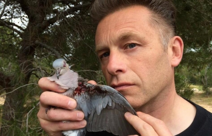 Chris Packham holds an injured Turtle Dove, one of the huntable quarries during Malta's spring hunting season