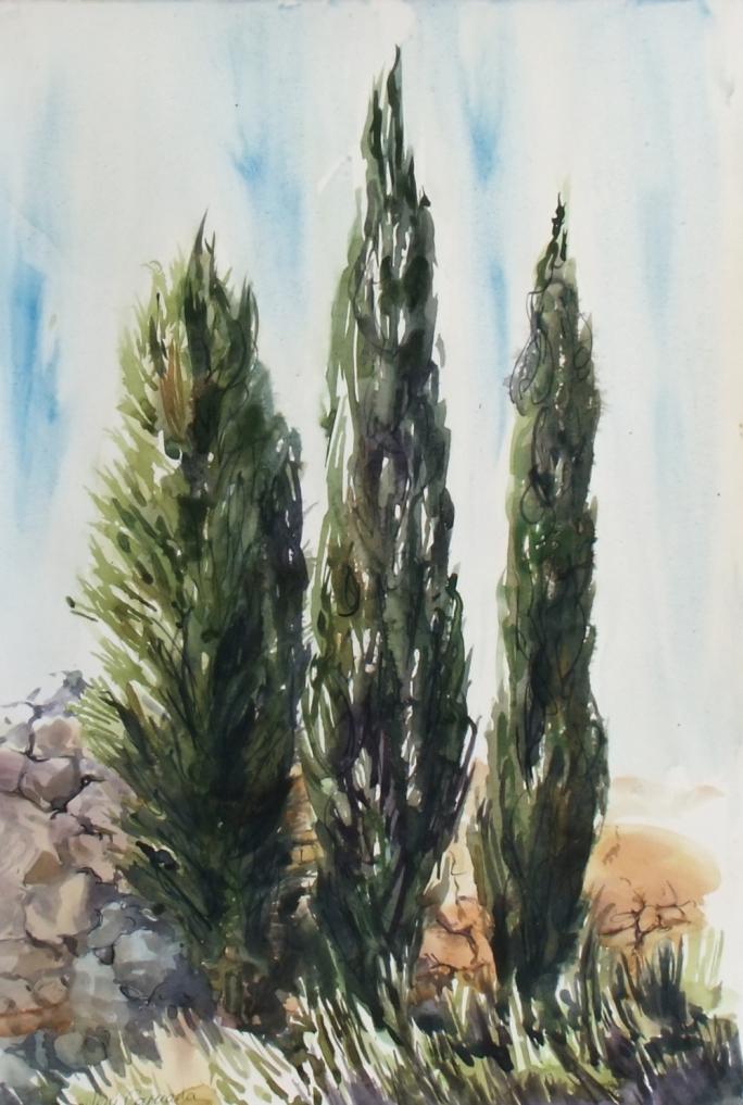 Cypress - Jeni Caruana