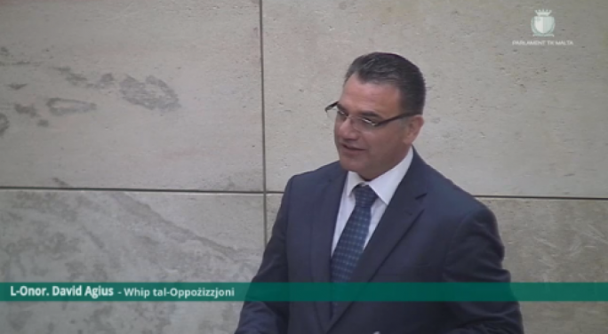 Opposition MP David Agius addresses parliament
