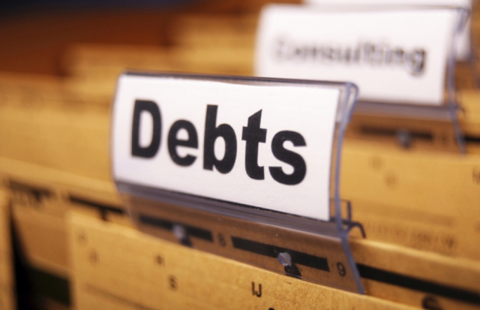 Companies were the most likely to have had domestic debtors with overdue debt claims past 30 days