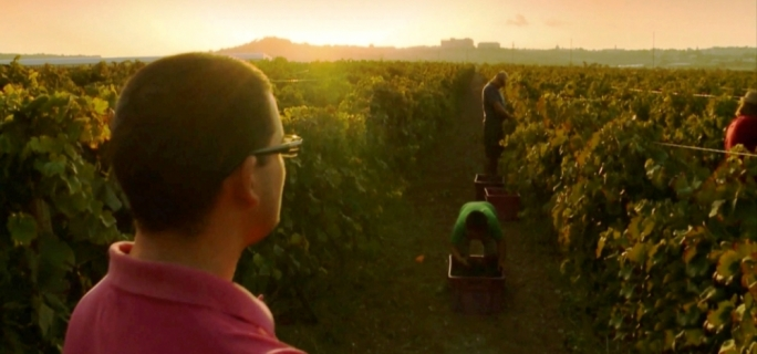 Winegrowing is a family affair for Matthew Delicata overseeing vineyard operations.