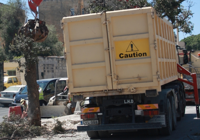 The most recent case, that of the trees near the Lija cemetery, which were chopped down to make way for the widening of the road, is a depressing case in point