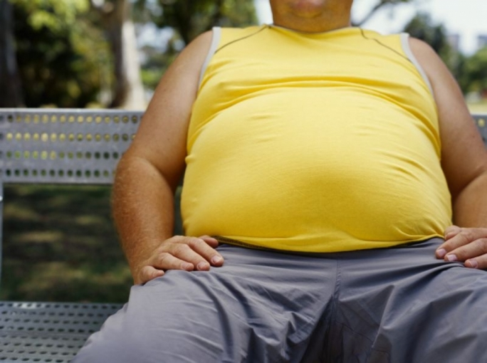 Obesity concerned more than 1 in 4 adults in Malta (26.0%)