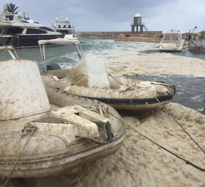 Boats moored at the Portomaso marina covered in fish slime (Photo: Jonathan Shaw/Facebook)