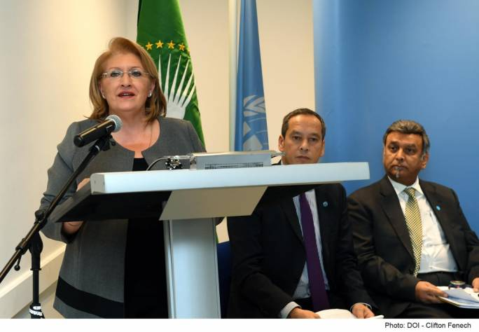 President Marie-Louise Coleiro Preca emphasised the huge potential of Africa's young workforce in an address at a discussion organised by the United Nations International Development Organisation